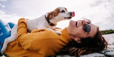 Perché i cani leccano i padroni e sono felici?