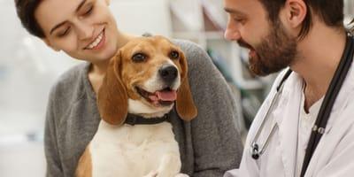 Animali domestici curabili con farmaci umani: Speranza approva il decreto