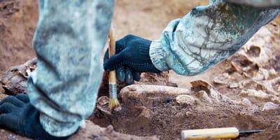 Manos de arqueólogo trabajando