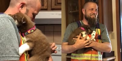 Watch: Man can't contain tears of joy as he meets his new puppy for the first time!
