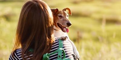 Famosa abre una cuenta para dar voz a perros y gatos y ¡rompe Instagram!