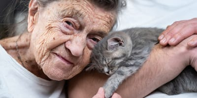 Terapia con gatos: cómo funciona y qué beneficios se pueden obtener