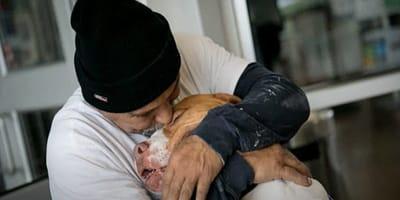 hombre abraza perro raza pitbull