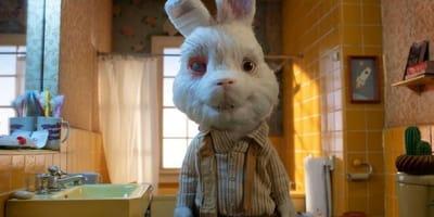 Save Ralph: por qué este conejito está conmocionando al mundo