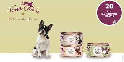 Prova gratuitamente i MINI-Menù di Terra Canis con il tuo cagnolino!