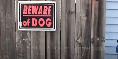 """Cartel """"cuidado con el perro"""": lo que hay detrás hace reír en vez de temblar de miedo"""