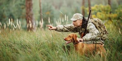 Szkolenie psów myśliwskich - wszystko, co warto o nim wiedzieć