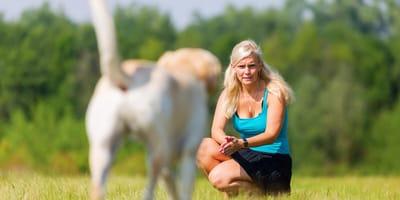 Przywołanie psa - jak nauczyć psa przychodzenia na zawołanie?