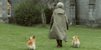 Queen celebrates 95th birthday with her new Corgi companions