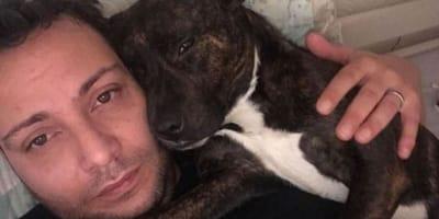 Va ad un colloquio di lavoro e il suo cane viene adottato