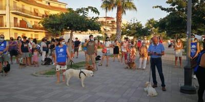 Il Comune non può vietare le spiagge ai cani: la sentenza del Tar