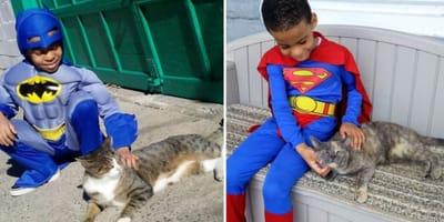 Bambino di 5 anni si veste da supereroe e salva i gatti randagi