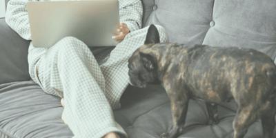 ¿Por qué los perros huelen nuestras partes íntimas?