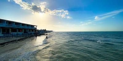 Ven un bulto en el mar en Progreso: se acercan y no pueden entender cómo llegó ahí