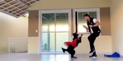 Giornata della danza: una fantastica Dog Dance tutta italiana! (Video)