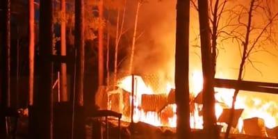 """""""Goodbye Deutschland"""": Flammenwand überrollte Huskyfarm in der Nacht!"""