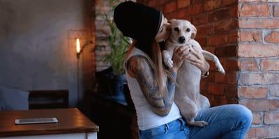 Schlimmer Trend: Tätowierte Haustiere werden immer beliebter