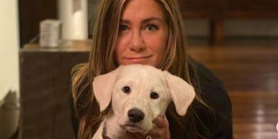 Incontramo i cani degli attori di Friends!