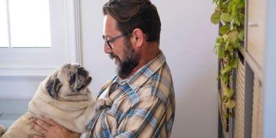 I 4 tipi di cani che cercano di più il contatto visivo rispetto agli altri