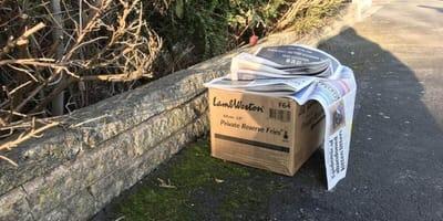 Una caja comienza a moverse sola al borde de la carretera: lo que hay dentro pone el vello de punta (Vídeo)