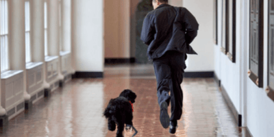 Obamas share touching tribute to beloved dog Bo, who passed away yesterday