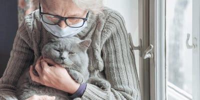Kann in jedem Haushalt passieren: Täglich sterben Katzen an einer unterschätzen Gefahr