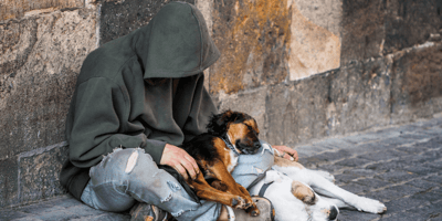Pet food giant announces support to charity helping homeless dogs and owners