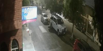 Capta en video el momento exacto en que le roban a su amado pug