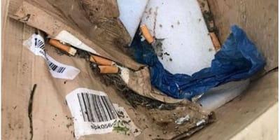 cigarro apagado en un cenicero
