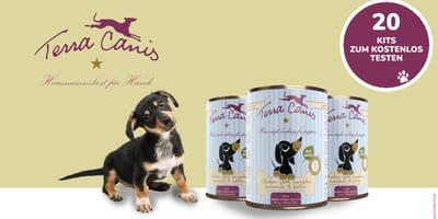 Testen Sie kostenlos die WELPEN-Menüs von Terra Canis für Ihr Hundebaby!
