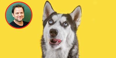 Kurioser Tipp von Martin Rütter: Darum brauchst du einen DUMMEN Hund