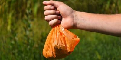 Orangeneer Hundekotbeutel aus Plastik mit Inhalt