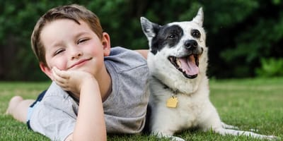 Łagodne psy - nie tylko rasa ma znaczenie!