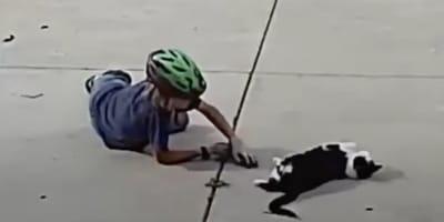Opiekun widzi, jak chłopiec zbliża się do jego kota i jest oszołomiony rozgrywającą się sceną