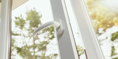 Abre su ventana: un montón de ramitas esconde una auténtica maravilla