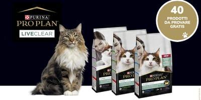gatto-con-prodotti-liveclear