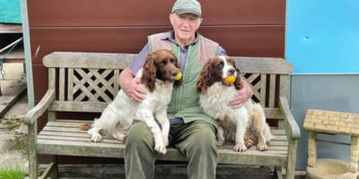 81-year-old man heartbroken after suffering every dog owner's worst nightmare