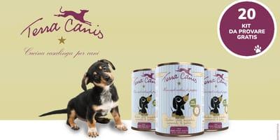 Prova gratis i menù PUPPY di Terra Canis con il tuo cagnolino!