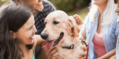 Moeders met kind en drie honden