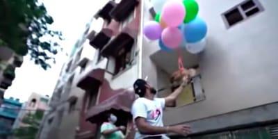 Mężczyzna przywiązał psa do balonów z helem.