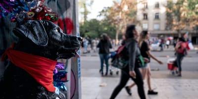 El perro Matapacos es un perro héroe en Chile
