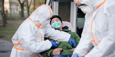 Detectan primer caso de gripe aviar en humanos: ¿las mascotas pueden contagiarse?