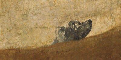 ¿A qué o a quién mira el perro de Goya?