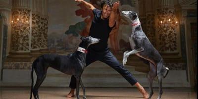 kledi-kadiu--balla-con-i-cani-galgos-spagnoli