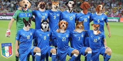 Una Nazionale da cani: i 4 zampe degli Azzurri in 4-3-3 per Euro 2021