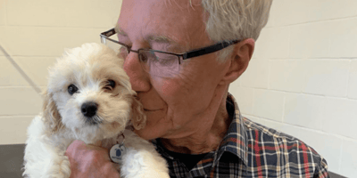 """Paul O'Grady admits the truth about what you see on """"For The Love Of Dogs"""""""