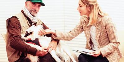 Receta de perros: la nueva moda entre los psicólogos