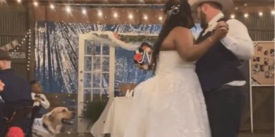 Los novios están en pleno baile: el perro se levanta y todos contienen la respiración (video)