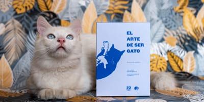Publica la UNAM libro escrito por una gatita, ¡para que cuides mejor a tu michi!