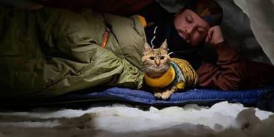 Ta para podbiła serca ludzi na całym świecie: człowiek i kot w rowerowej podróży dookoła świata